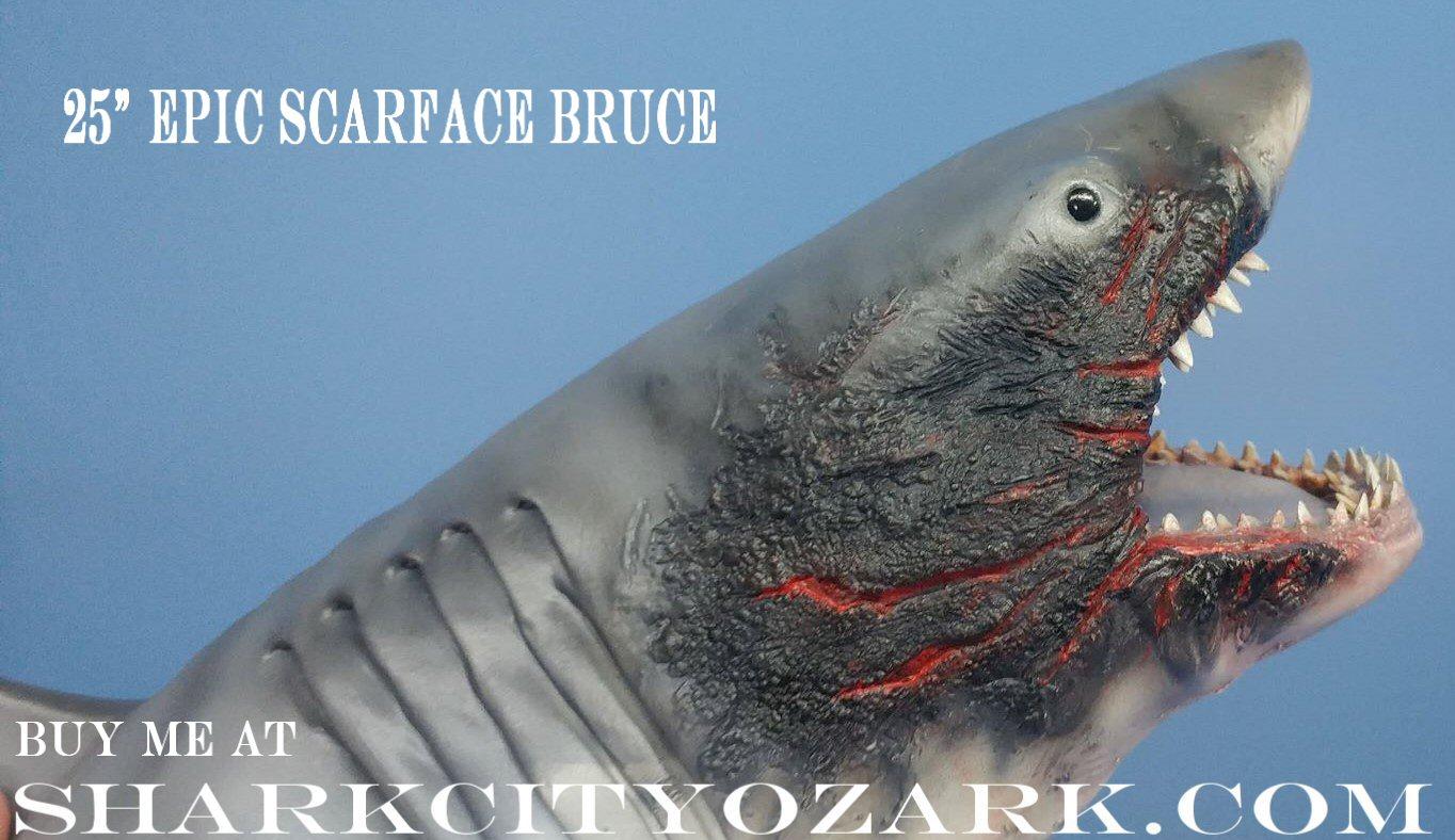 All Categories - Welcome to SharkCityOzark com
